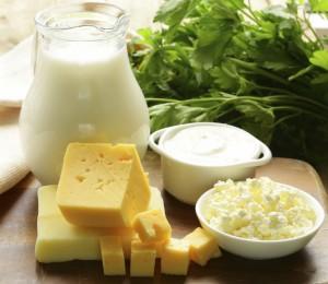 乳製品 ヨーグルト チーズ
