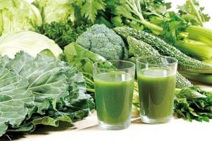 青汁 野菜 成分