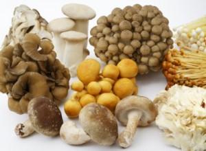 便秘 改善 不溶性食物繊維 きのこ類 豆類 いも類