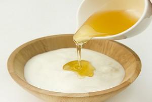 ホットヨーグルト ダイエット 方法 ハチミツ