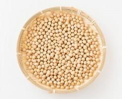 大豆プロテイン ダイエット効果 大豆ペプチド サポニン