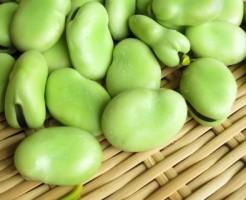 セロリ そら豆 スイカ 栄養素 食物繊維 カリウム
