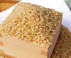 玄米 ダイエット 効果 成分 ビタミンB群 食物繊維