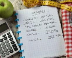 ダイエット カロリー 摂取 目安 基礎代謝