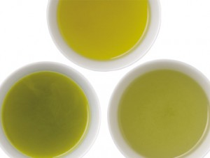 緑茶 急須 ペットボトル 比較 成分 含有量