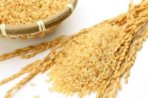 ダイエット 玄米 腹持ちが良い 満腹中枢