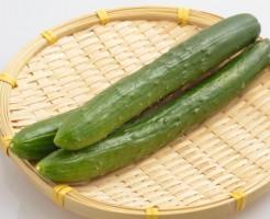 キュウリ 栄養素 ダイエットとの関係性