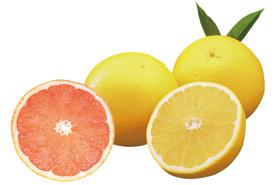 ダイエット中 夏 果物 グレープルーツ ビタミンC ヌートカトン 脂肪燃焼