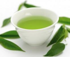 緑茶 ダイエット効果 カテキン 脂肪燃焼 抗酸化作用