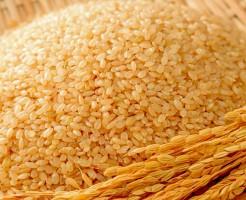 玄米ダイエット 効果 便秘解消 満腹感