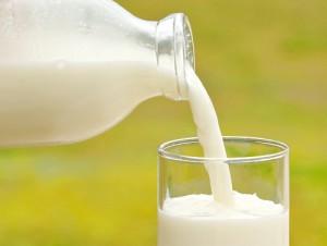 ダイエット 牛乳 タイミング 代謝アップ 満腹感